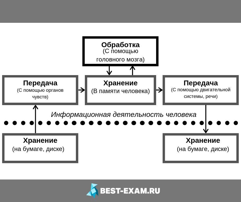 Взаимосвязь информационных процессов картинка схема